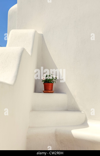 a flower pot on a white, Greek staircase - Stock Image