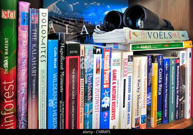 Collection showing assortment of travel guides and guidebooks about worldwide holiday destinations on a bookcase - Stock-Bilder