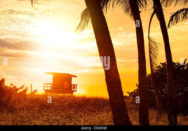 Miami South Beach sunrise with lifeguard tower and palm tree - Stock Image