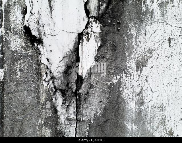 old and decayed cement wall - Stock Image