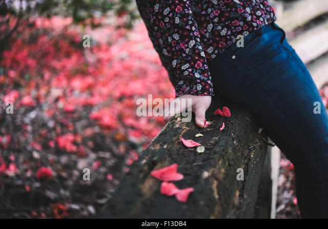 Close-up of mid section of a woman sitting on a wooden fence - Stock Image