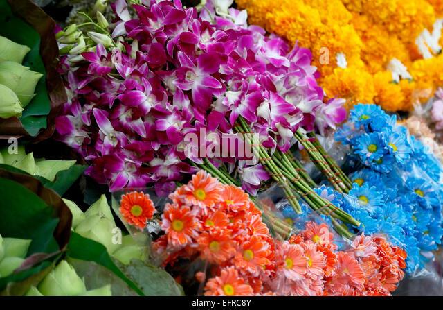 Flowers, Ton Lamyai Flower Market, Chiang Mai, Thailand - Stock Image