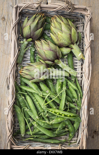 fresh artichokes and peas in a basket on rustic wooden background - Stock Image