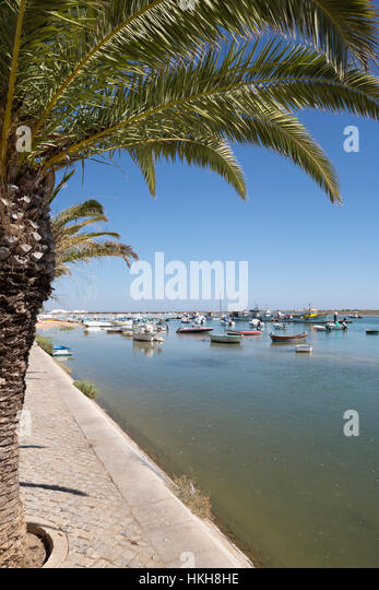 Palm lined promenade of fishing village known as capital of octopus (capital do Polvo), Santa Luzia, Algarve, Portugal, - Stock Image