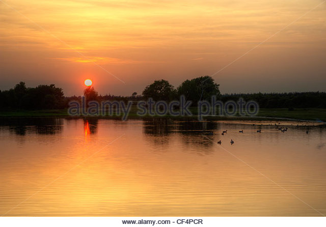 Hatchet Pond fishing lake, the largest body of water in the New Forest, at sunset. - Stock Image