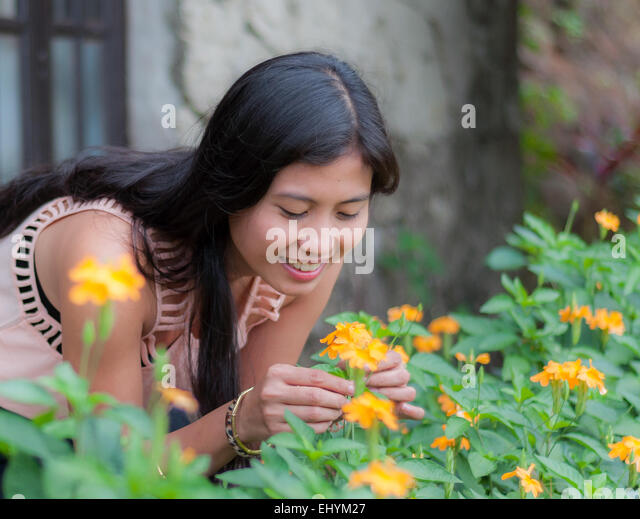 Young woman picking flowers in the garden - Stock Image