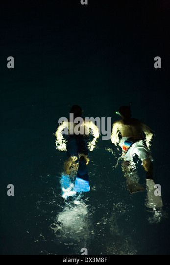 Boys with flippers snorkeling in illuminated water at night, high angle view - Stock Image