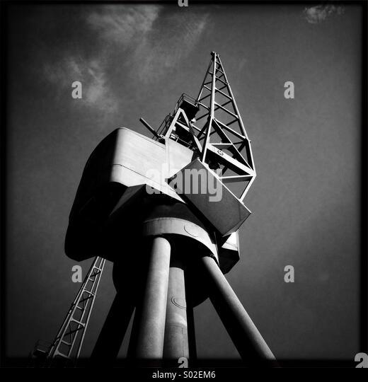 Sunlit Crane - Stock Image