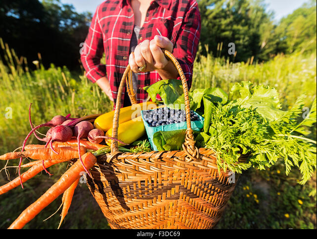 Mid section of woman holding basket with vegetables and fruits - Stock Image