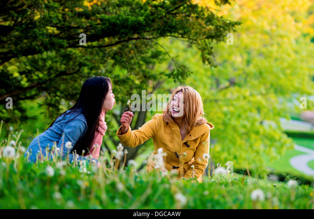 Two young females blowing dandelion clock in park - Stock Image