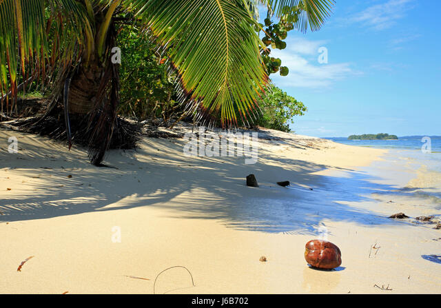 Tropical Beach of Zapatilla Sur. Bocas del Toro, Panama - Stock Image