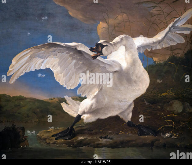 The Threatened Swan, by,  Jan Asselin, circa 1650,Rijksmuseum, Amsterdam, Netherlands, Europe, - Stock Image