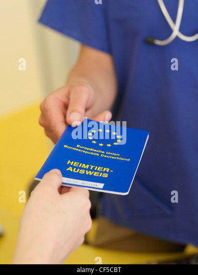 Veterinary woman with vaccination pass - Stock Image