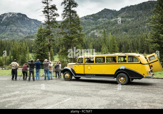 Yellowstone Park Tour Bus Stock Photos Amp Yellowstone Park
