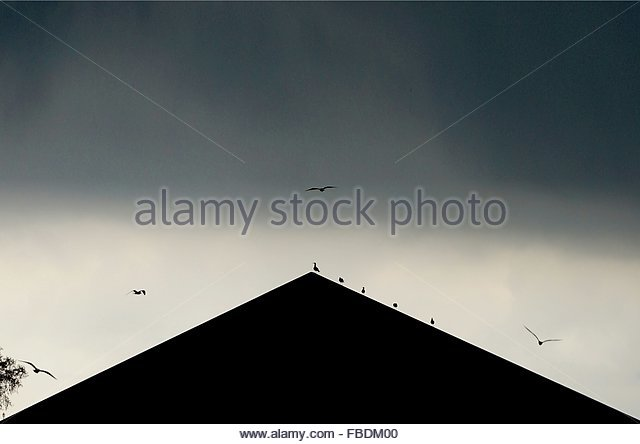 Silhouette Of Triangle Shape Roof And Birds - Stock-Bilder