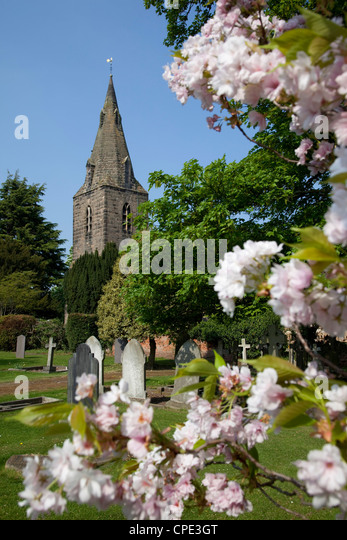 Church and spring blossom, Burton Joyce, Nottinghamshire, England, United Kingdom, Europe - Stock Image
