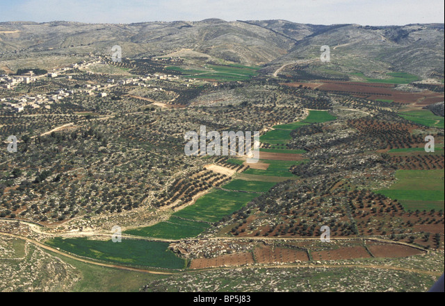 JUDEA - THE CENTRAL HILL COUNTRY NEAR MARESHA 3656 JUDEA - COUNTRYSIDE BETWEEN BETLECHEM & HEBRON WITH ARAB - Stock Image