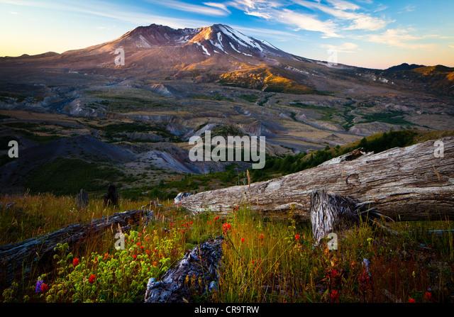 Mount St. Helens National Volcanic Monument - Stock-Bilder