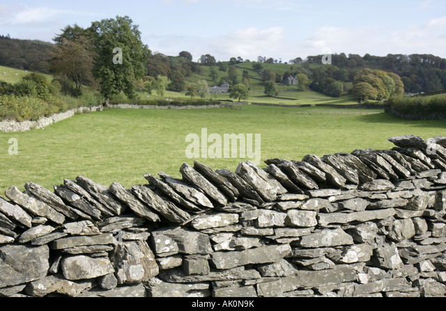 UK, England, Sawrey, stone wall, - Stock Image