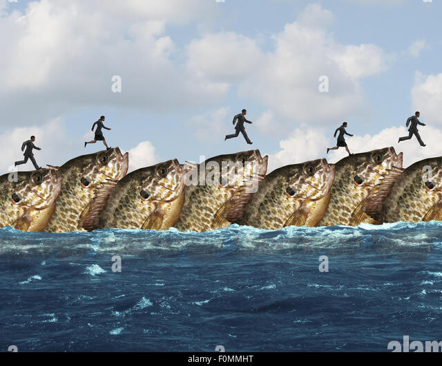 Market cooperation or favourable marketing conditions and business assistance concept as a group of fish creating - Stock Image