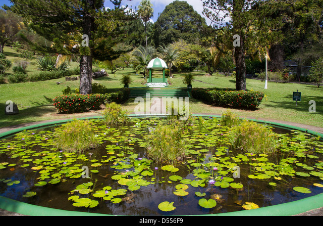 Kingstown Stock Photos Kingstown Stock Images Alamy