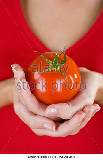 A Woman's Hands Holding A Tomato - Stock Image