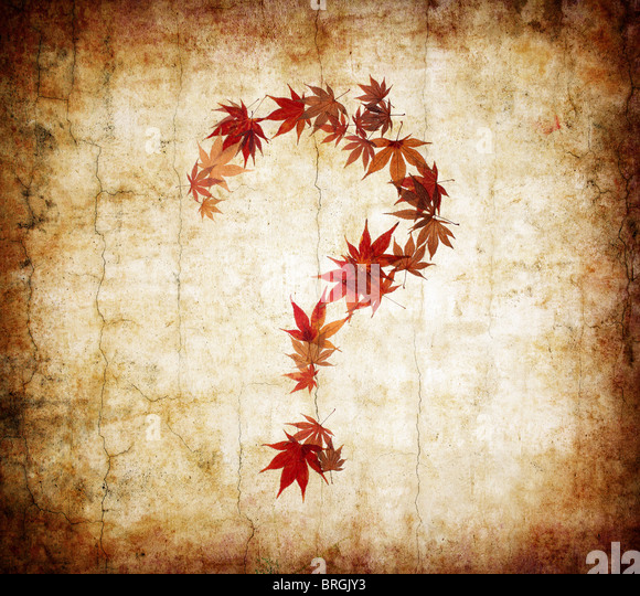 grunge background with question mark made by leaves - Stock Image