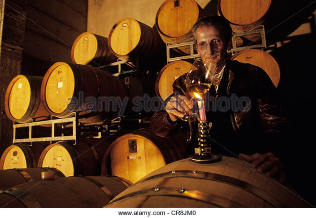 Italy, Aosta Valley, Aymavilles Costantino chariot, producer of wine in the cellar of the winery The Crest - Stock Image