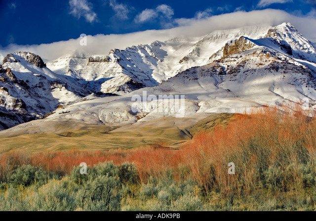 Steens Mountain with fresh snow and red willows Oregon - Stock-Bilder
