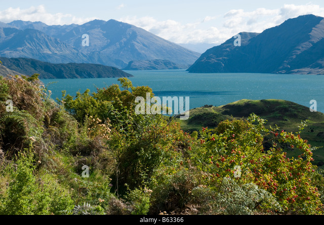 Lake Wanaka, South Island, New Zealand - Stock Image