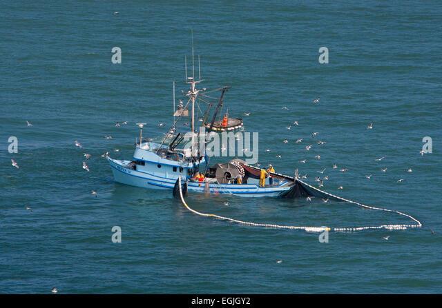Purse seine net stock photos purse seine net stock for Purse seine fishing