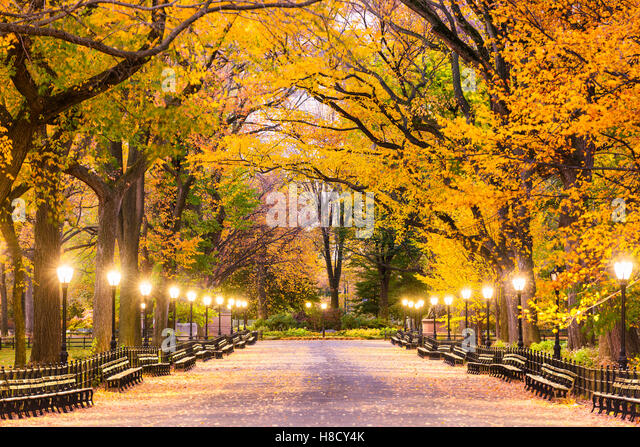 Central Park at The Mall in New York City during predawn hours. - Stock Image