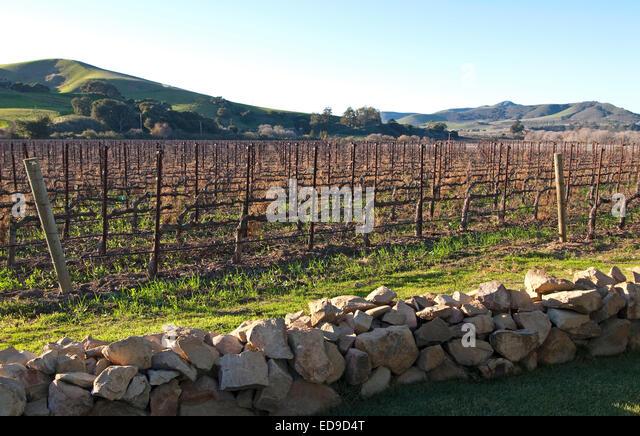 California Wineries Stock Photos Amp California Wineries