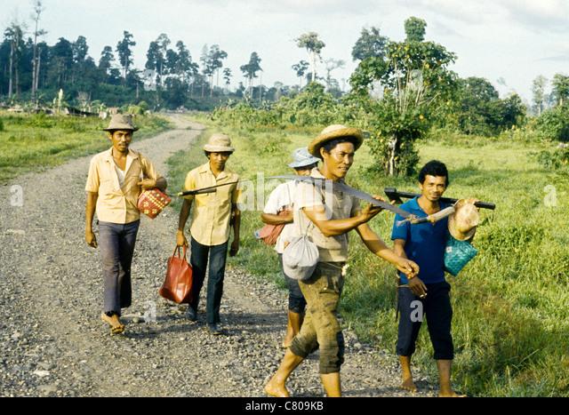 Forestry workers with their tools in The Phillipines - Stock-Bilder