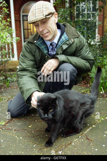 Cats Protection League Address