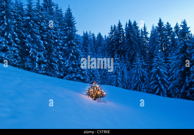 Austria Christmas Tree Stock Photos & Austria Christmas
