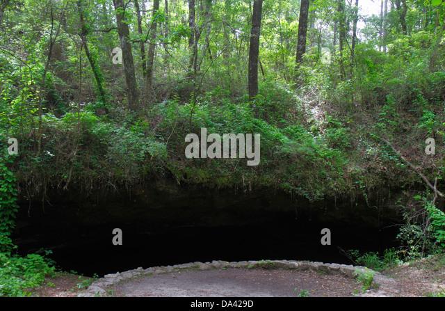Tallahassee Florida Apalachicola National Forest Leon Sinks sinkhole Big Dismal Sink Woodville Karst Plain - Stock Image