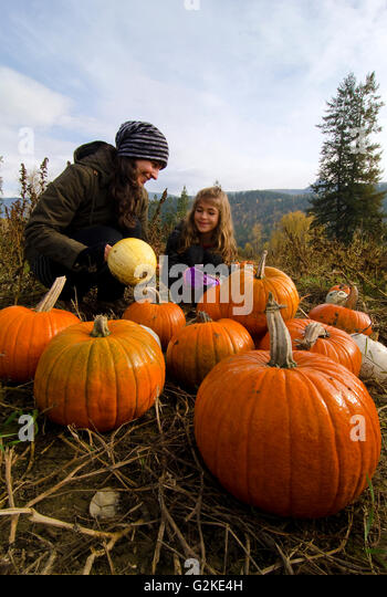 Mother daughter selecting pumpkins in pumpkin patch Green Croft Gardens in Grindrod in Shuswap region British Columbia - Stock Image