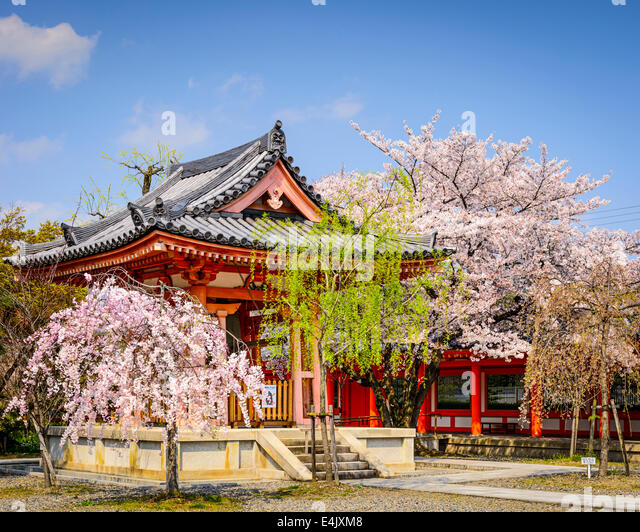 Sanjusangen-do Temple grounds during the spring season in Kyoto, Japan. - Stock Image