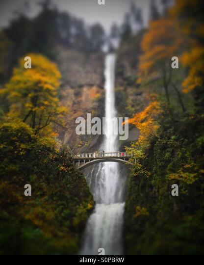 Bridge with visitors to Multnomah Falls, Oregon in the fall. - Stock-Bilder