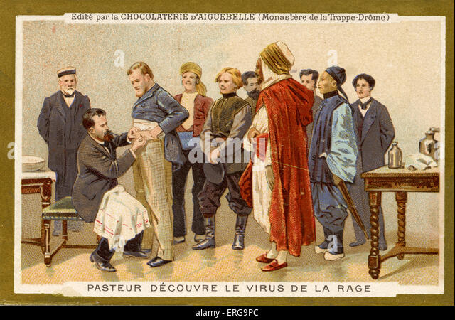 Louis Pasteur discovers the rabies virus. Pasteur's development of rabies vaccine laid the foundations for the - Stock Image