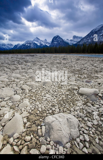 Dry rocky riverbed of the Athabasca River, Athabasca Range in background. Jasper National Park, Alberta, Canada. - Stock Image