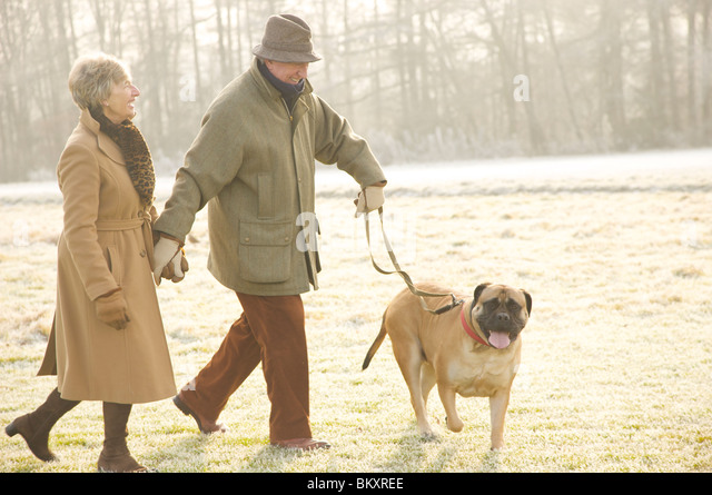 Portrait of a mature couple walking with a dog in the park smiling and laughing - Stock-Bilder