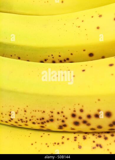 Bananas - Stock Image