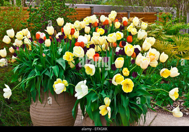 Flagged Stock Photos Amp Flagged Stock Images Alamy