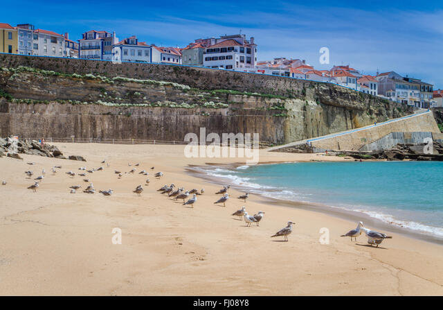 ericeira single girls Helios beach houses in ericeira we didn't have a single bad meal two of the girls are now 'little surfers girls' and i know will continue surfing.