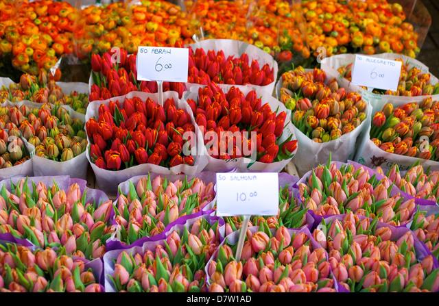 Bloemenmarkt Flower Market, Amsterdam, Netherlands - Stock Image