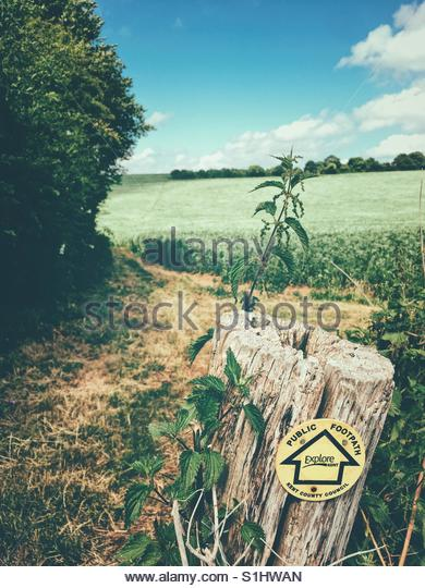 Public Footpath in the Countryside - Stock Image