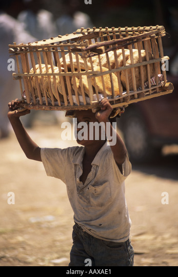 boy in marketplace in Hurghada - Stock Image