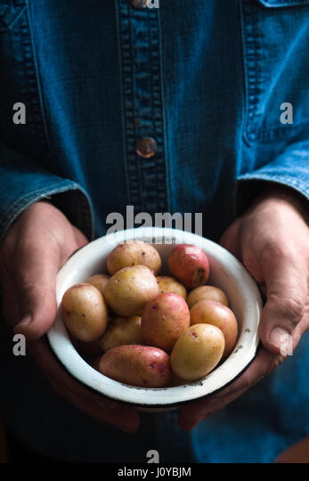 Hands with raw potatoes in the metal bowl - Stock Image